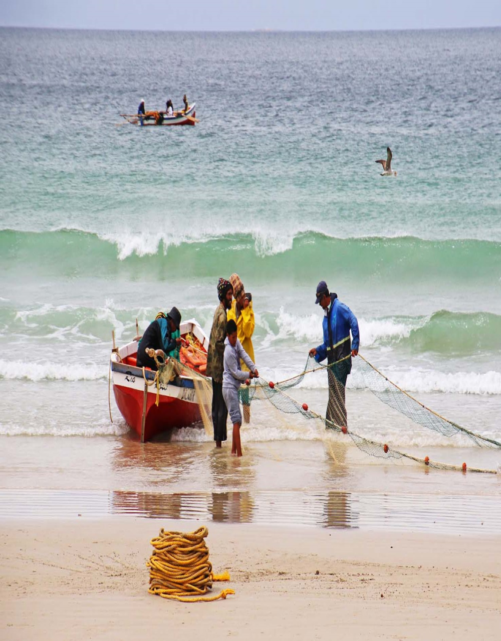 Fish Hoek beach pulling in the net